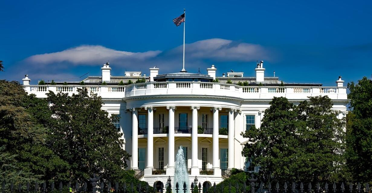 2007 & 2008: The Strategy of the White House Office of Political Affairs