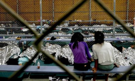 An American Third Decree: Texas Woman Arrested for Helping Immigrants