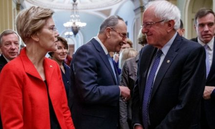 Are You Tired of the Warren vs. Sanders Wankfest?