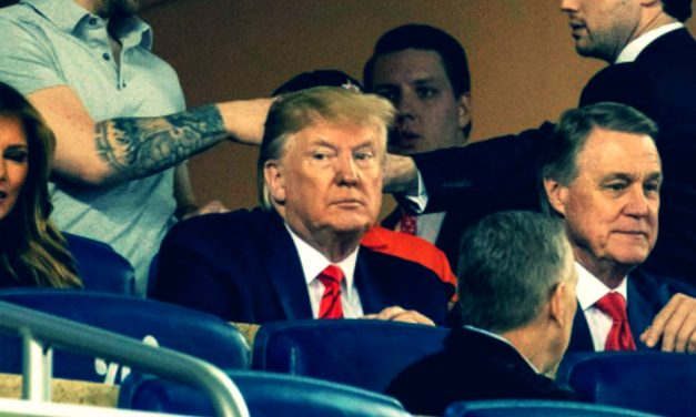Donnie's Bad Night At the Ballgame: On Booing Public Figures