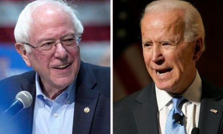 Biden and Sanders Supporters are from Mars and Venus