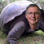 Mitch McConnell is a Menace But He's Overrated