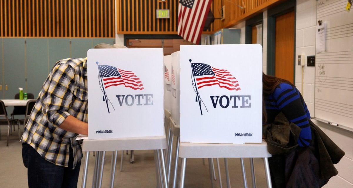It's a Bad Idea to Vote Twice