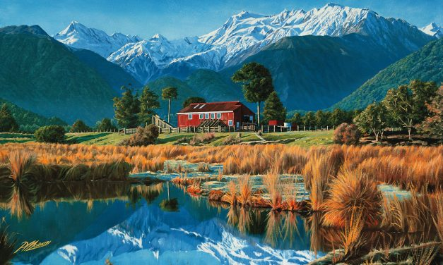 I Wish We Were More Like New Zealand