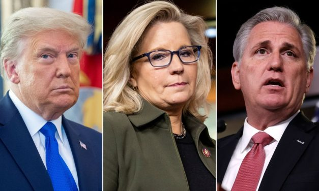 Liz Cheney is Off-Message, But That's Not Her Fault