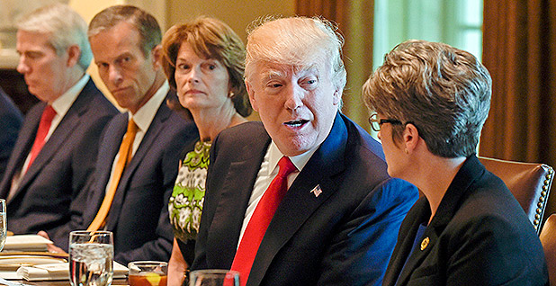 Party of Trump Rejects January 6 Commission